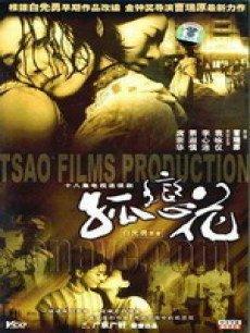 孤恋花(2005版)